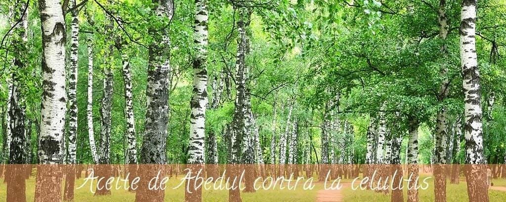 El Aceite de Abedul y sus beneficios contra la celulitis