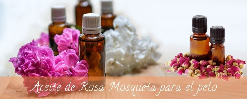 Todo lo que tienes que saber sobre el Aceite de Rosa Mosqueta - Alpel