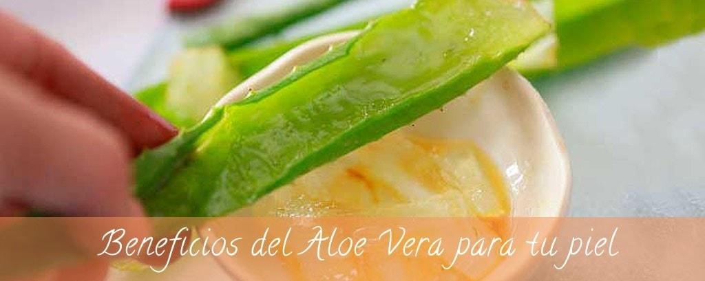 Beneficios del Aloe Vera para la piel de tu cara - Alpel