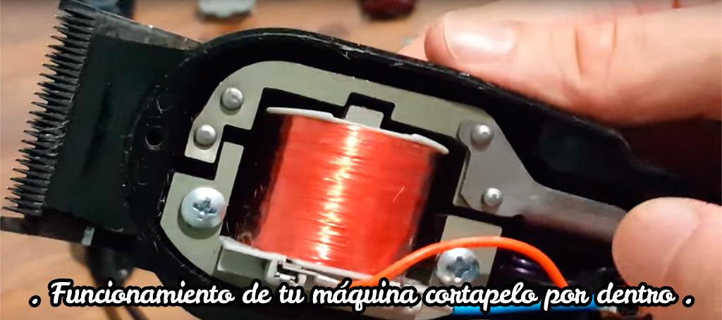 Funcionamiento de tu máquina cortapelo por dentro